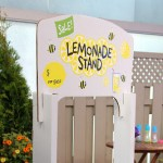 Create your own Lemonade Stand!