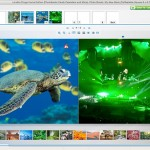 If you choose to select a photo as your background, the software automatically crops it to square for you. (See that warning icon in the turtle photo? That's the software telling me the image isn't large enough and may not print well as a result. Just more user-friendliness from the Photolab software!)
