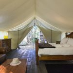 London Drugs' Ultimate Guide to Glamping