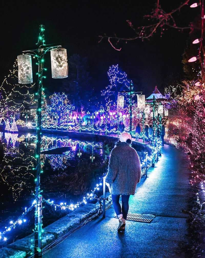 Christmas Lights VanDusen Botanical Garden London Drugs