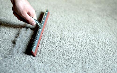 squee-carpet-2