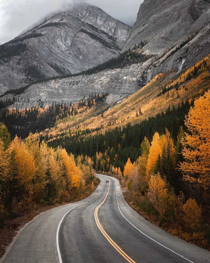 Icefields Parkway in Fall - London Drugs Blog