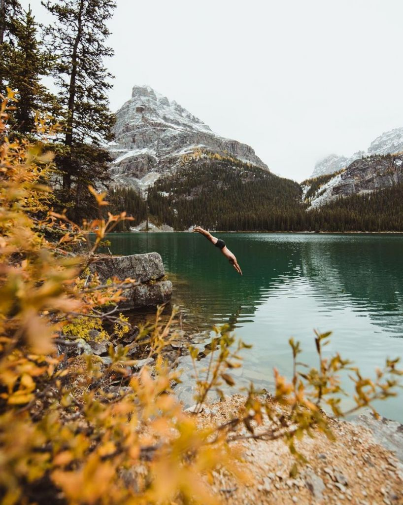 Lake O'Hara - London Drugs Blog