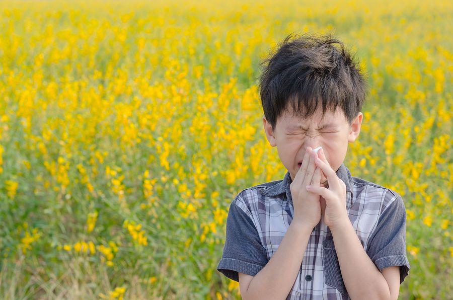 Boy Allergies Pollen Natural Remedy London Drugs Blog
