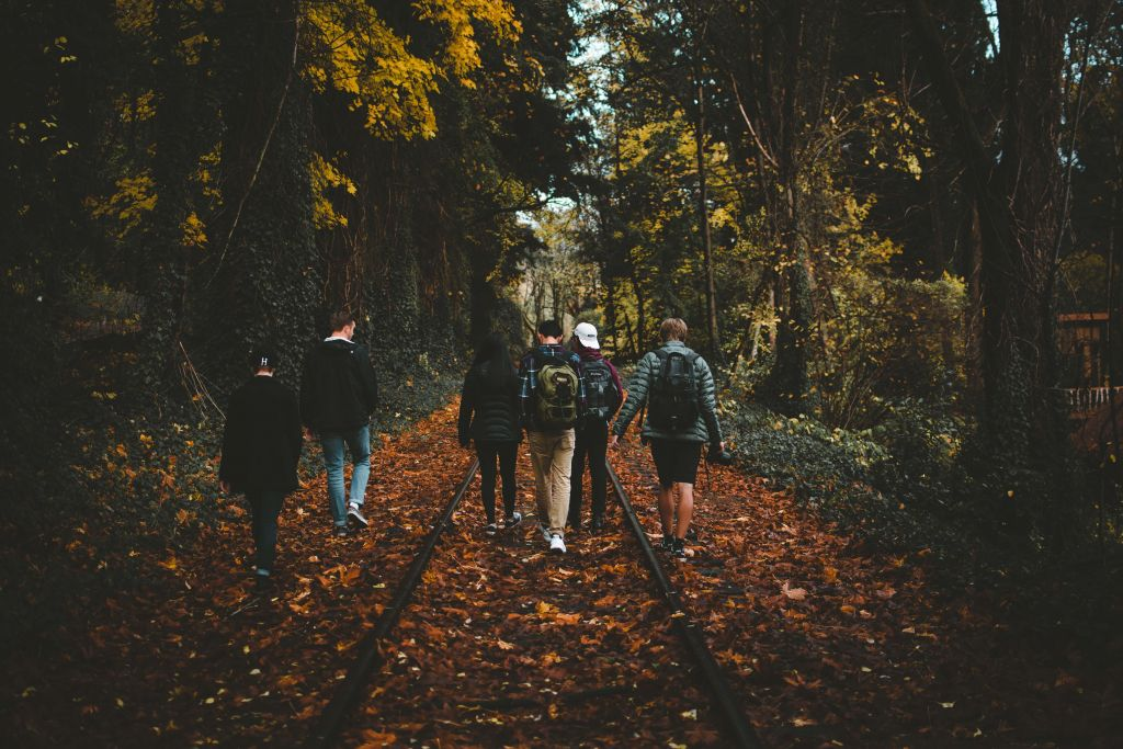 Do a seasonal activity like a walk in the woods this Thanksgiving