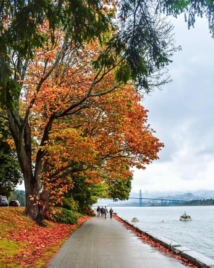 Stanley Park - Beautiful Canada: 10 Stunning Places To Enjoy Fall Leaves