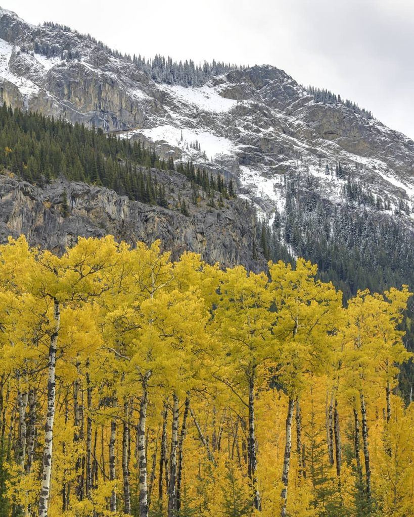 The Rocky Mountains - Beautiful Canada: 10 Stunning Places To Enjoy Fall Leaves