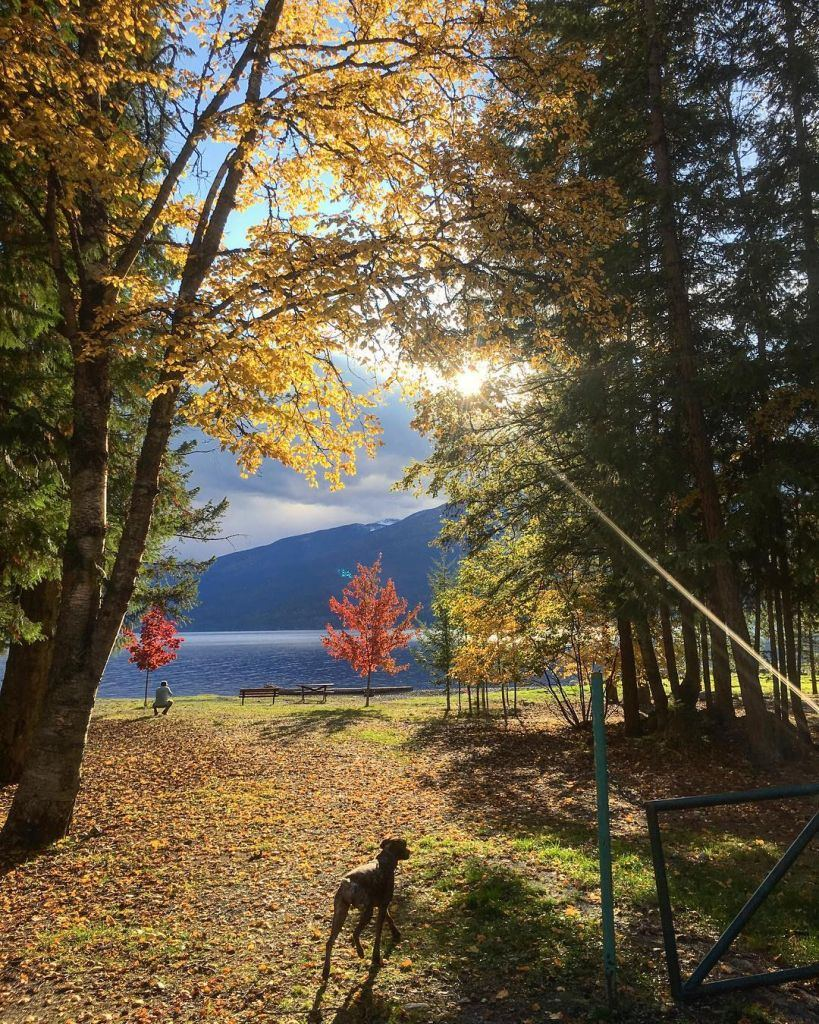 New Denver - Beautiful Canada: 10 Stunning Places To Enjoy Fall Leaves