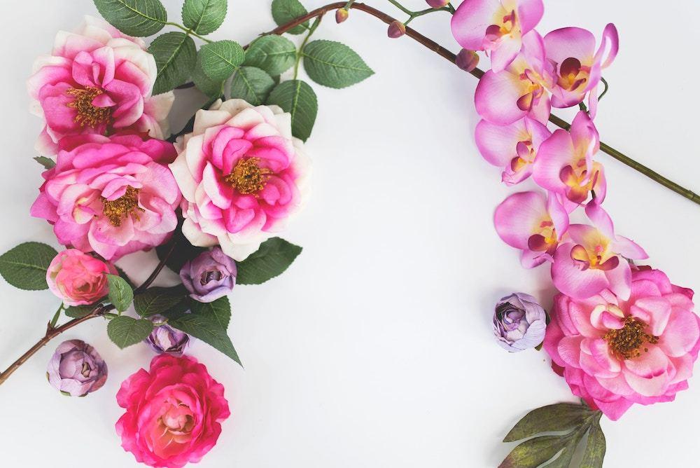 Floral Scents Fragrances London Drugs Beauty