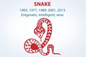 Chinese Zodiac Sign: Snake